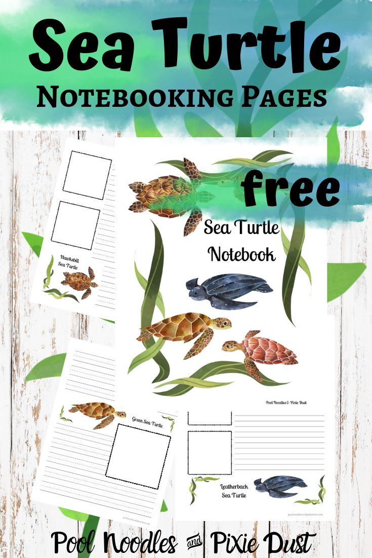 Free Sea Turtle Notebooking Pages
