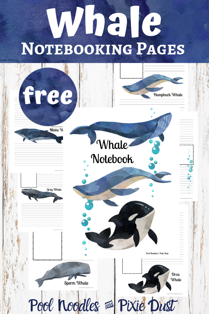 Whale Notebooking Pages - Pool Noodles & Pixie Dust